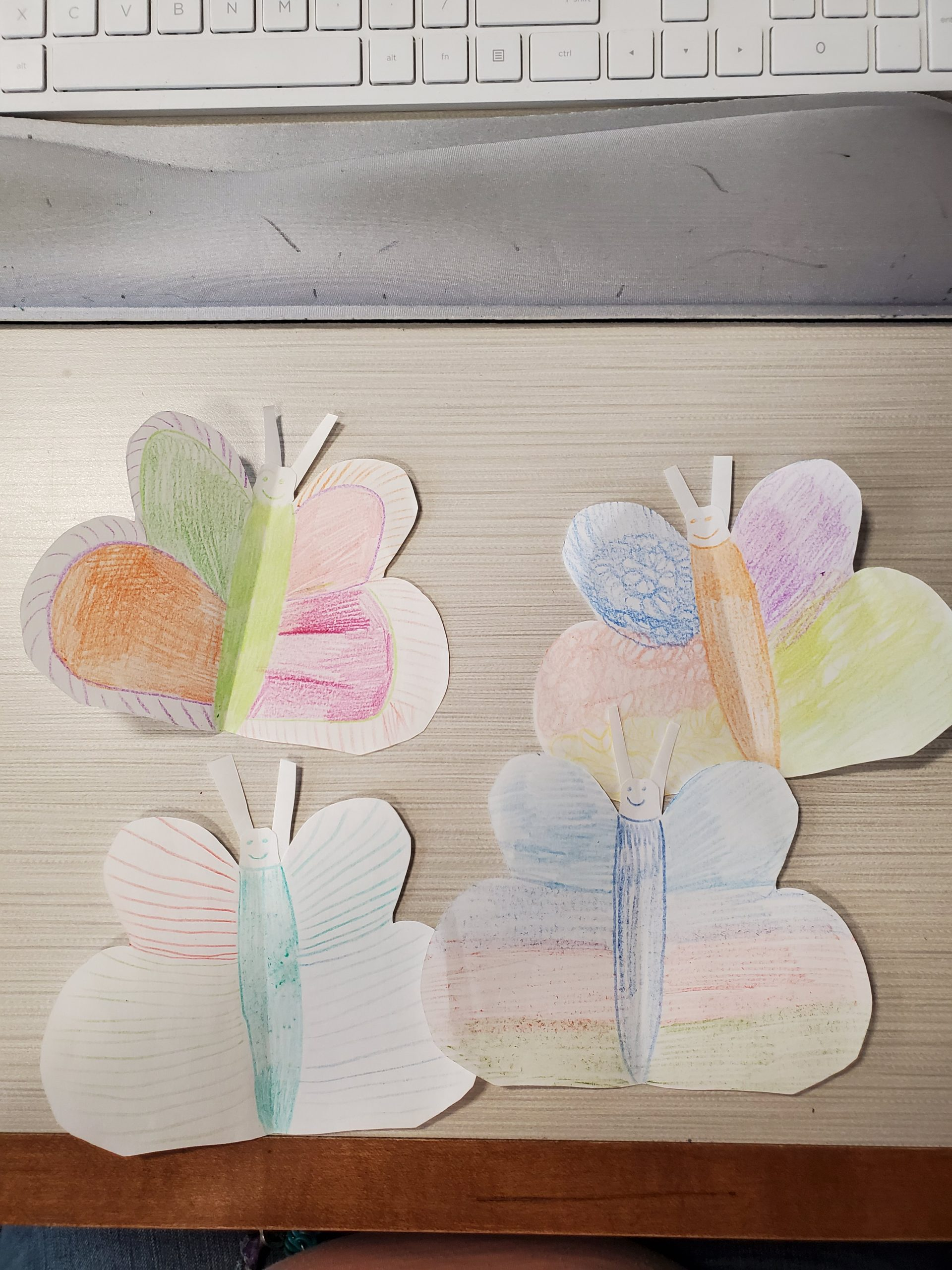 3D Butterfly Craft