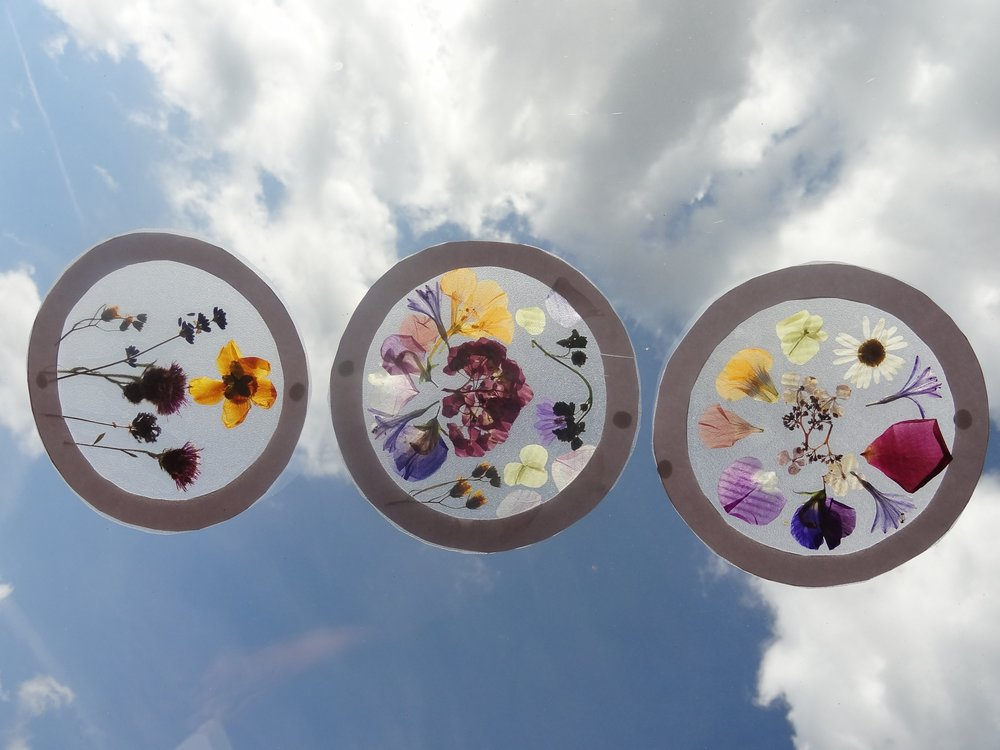 Make Nature Suncatchers