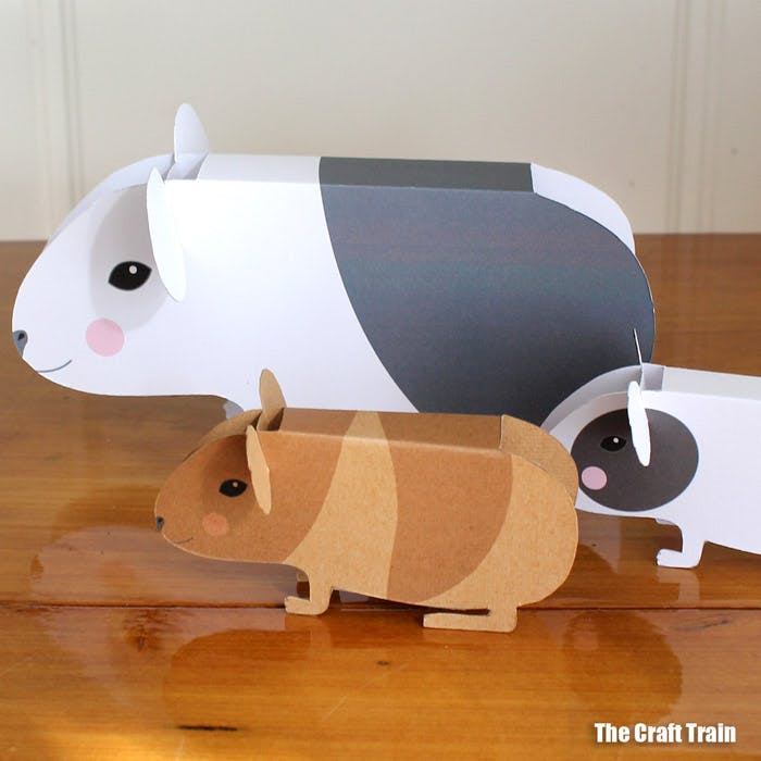 Guinea Pig Craft Instructions